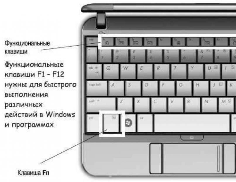 Не работает кнопка fn на ноутбуке. что делать?