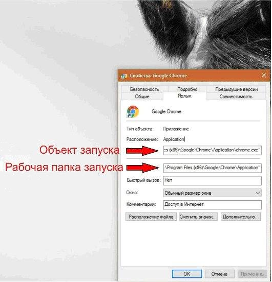 Почему браузер самостоятельно запускается