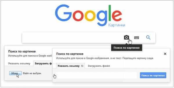 Google поиск по картинке: как найти похожее изображение