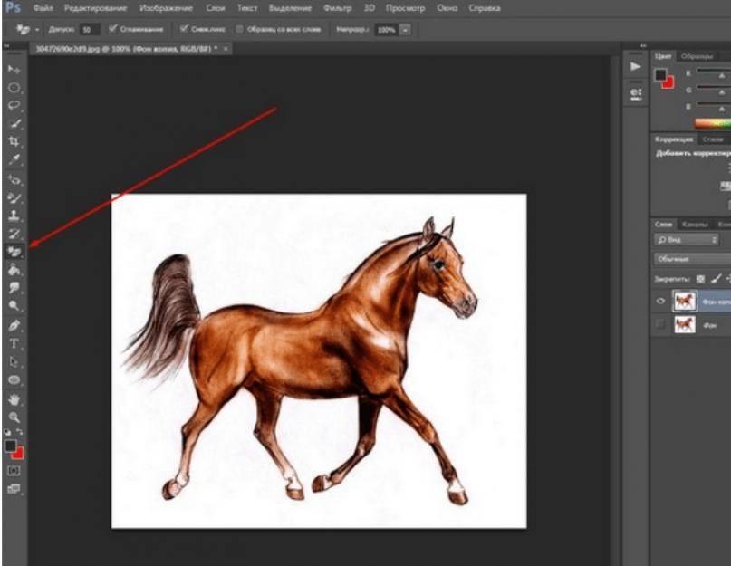 Инструменты для удаления фона с фотографий – в режиме онлайн и photoshop