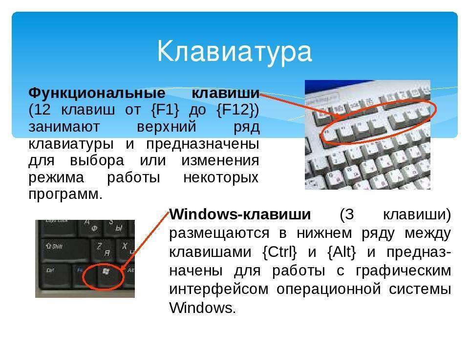 Не работает кнопка fn на ноутбуке asus, samsung, hp и прочих
