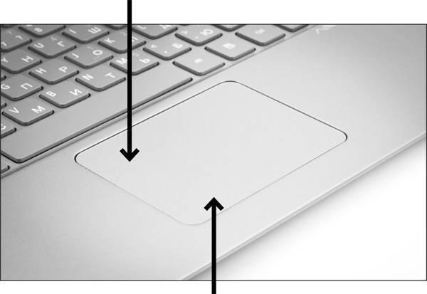 Тачпад на ноутбуке с windows 10: как включить, настроить и что делать, если не работает