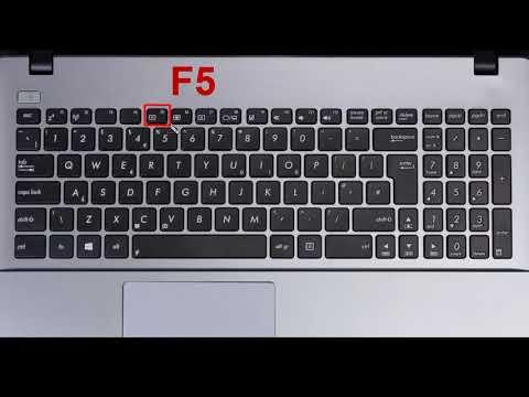 На ноутбуке не работает кнопка fn - что делать, функциональная клавиша