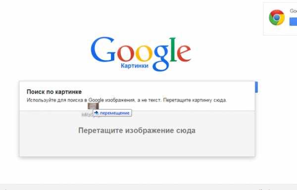 Поиск по картинке google и яндекс: как искать фото