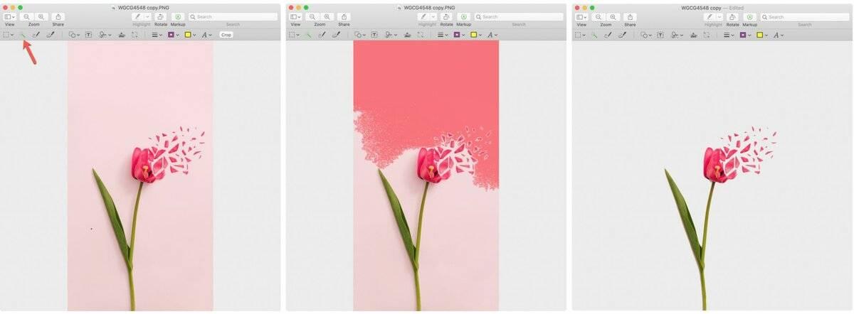 Удалить фон фотографии: лучшие программы и сайты | itigic