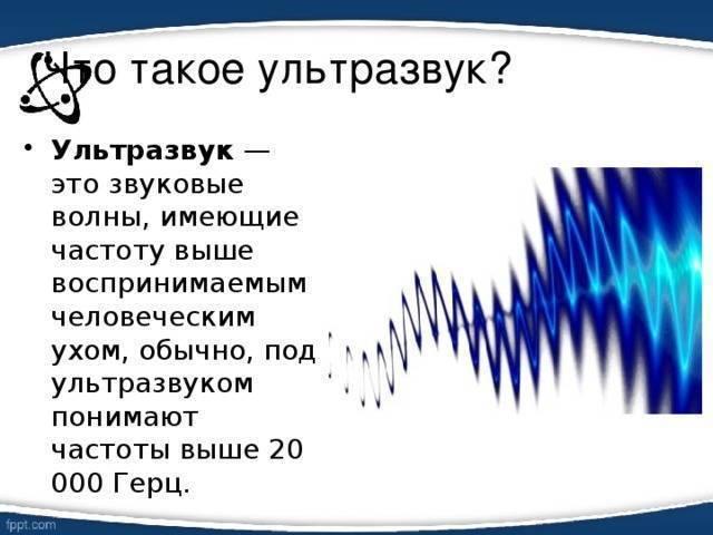 Влияние ультразвуковых отпугивателей на человека: опасно ли устройство?