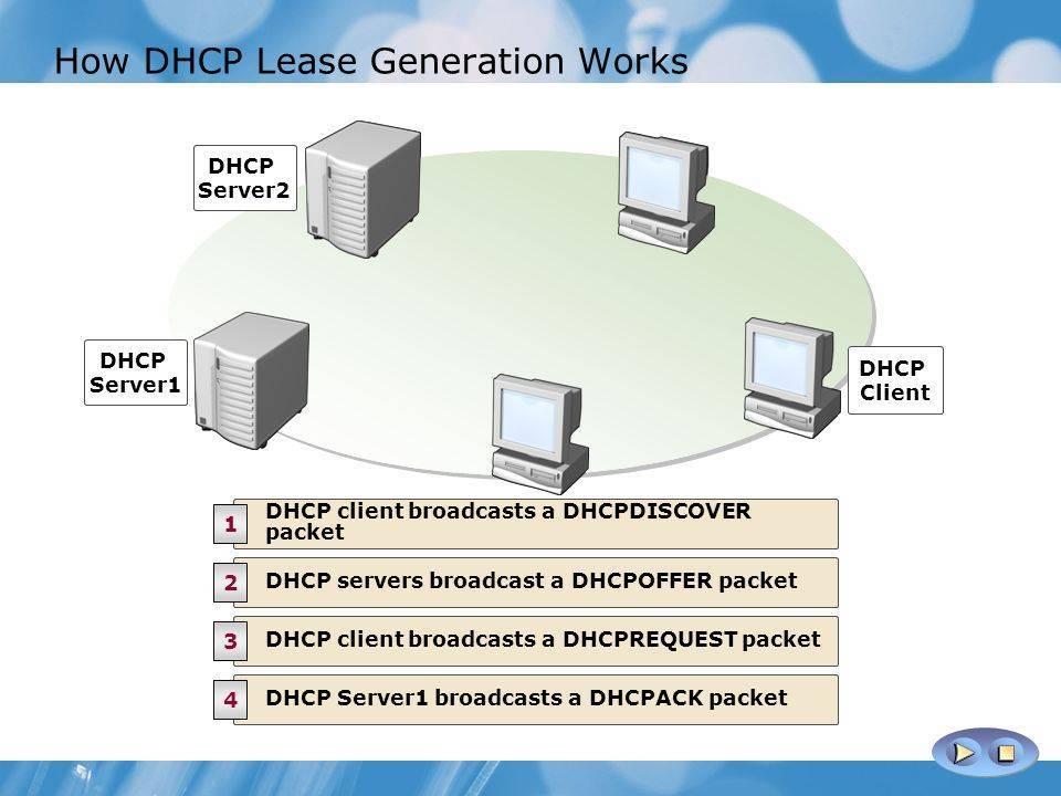 Тонкости dhcp. как на основе роутера и сетевого адаптера компьютера настроить локальную сеть