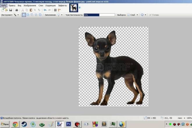 Вырезать фон на фото или картинке онлайн бесплатно - photodraw.ru