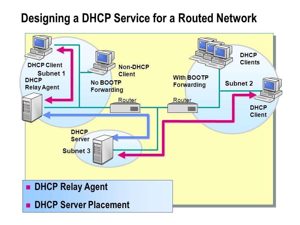 Как настроить статический dhcp в роутере?   сеть без проблем