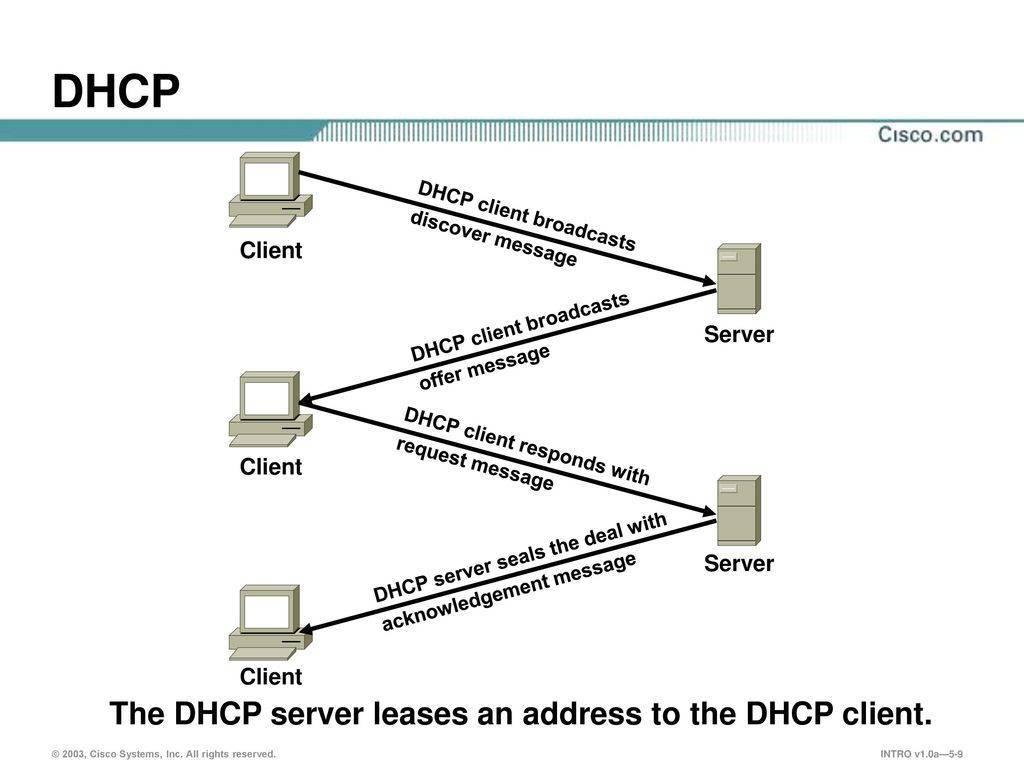 Dhcp-сервер: описание, установка, включение, авторизация и настройка