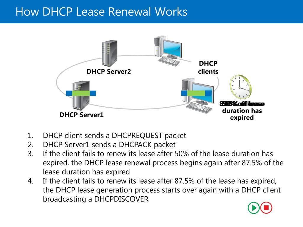 Протокол dhcp   microsoft docs